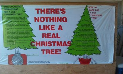 Cut Your Own Christmas Tree Directions Tricolor Tree Farm - Christmas Tree In Downingtown Pa